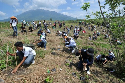tree planting world record set in philippines