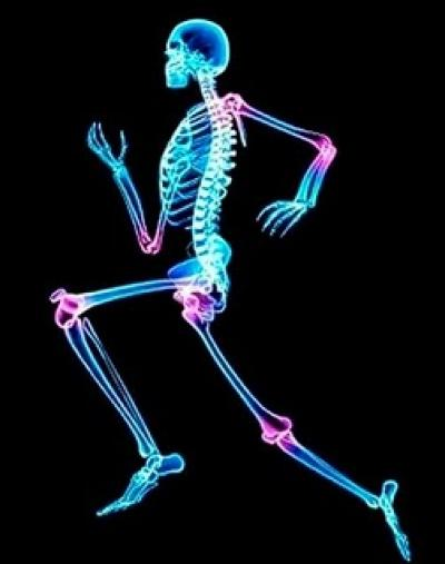 Weight Bearing Exercise Does Not Prevent Increased Bone